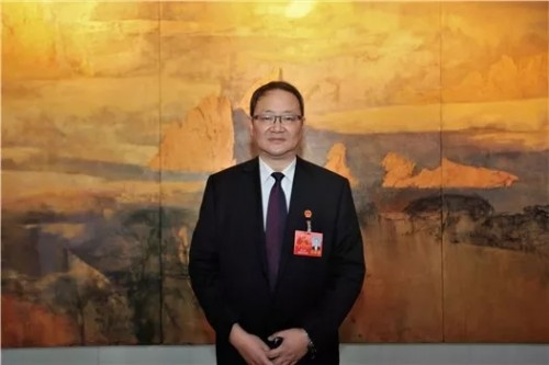 """安徽""""两会"""" 奇瑞新能源高立新建议推广驾校教练车型电动化"""