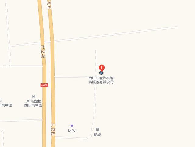 中国人保携手中宝宝马举办购车嘉年华