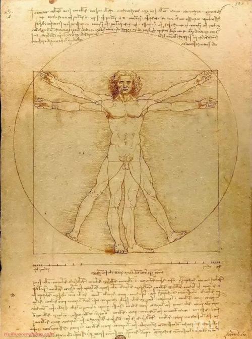 从人体到机械,美的比例是否有章可循?